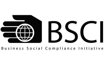 Domijump BSCI certificate