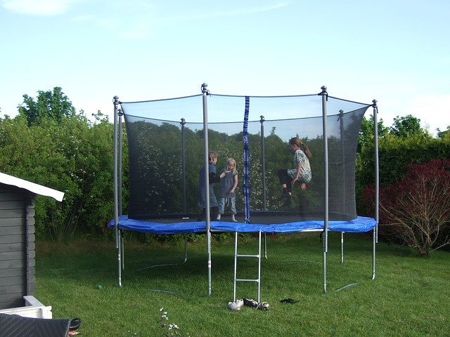 trampoline with a ladder